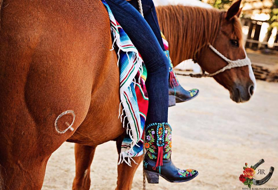Rodeo Quincy Boots