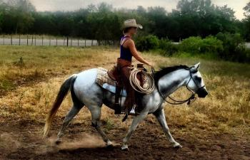 Cowgirl riding white horse