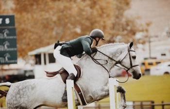 Action Athlete White Horse
