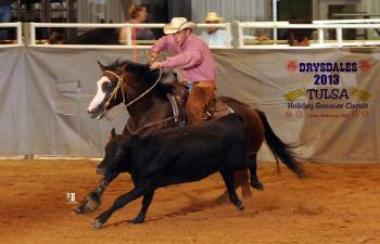 Reining Cow Horse